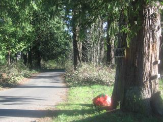 Strawberry-park-entrance-2