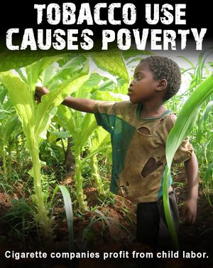 Tobacco-causes-poverty