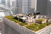 Rooftopsgreen