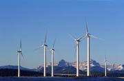 Windfarm_6
