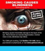 Austblindnessback