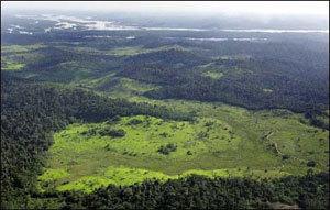 Deforestation_amazone