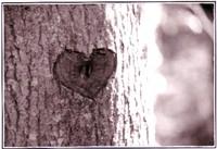 Gravure_arbre